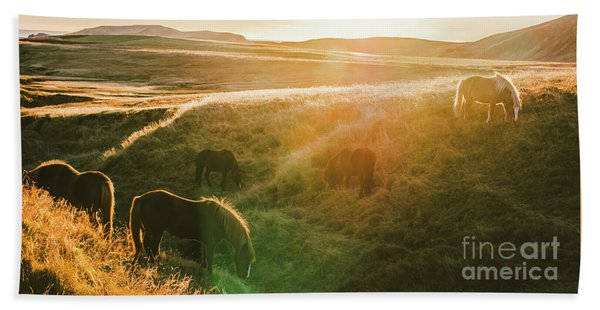 Icelandic Landscapes, Sunset In A Meadow With Horses Grazing  Ba Bath Towel