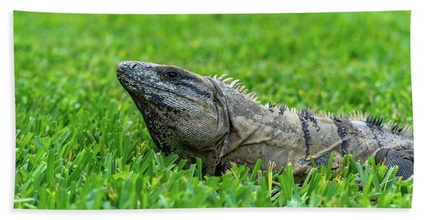Iguana In Grass Hand Towel