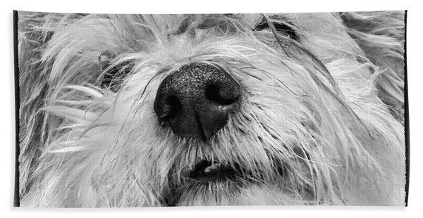 Coton De Tulear Dog Bath Towel