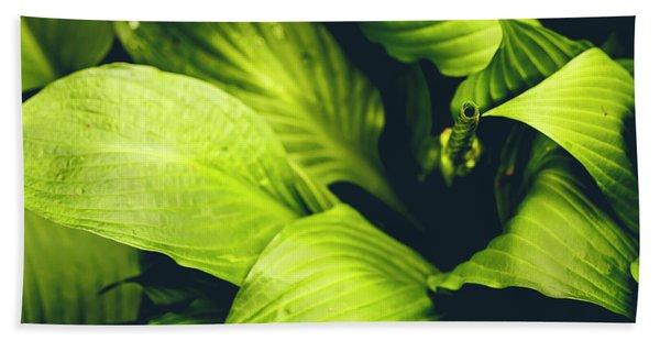 Leafy Greens Hand Towel