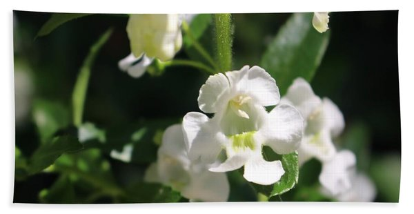 Lily Of The Valley, Cape May Hand Towel