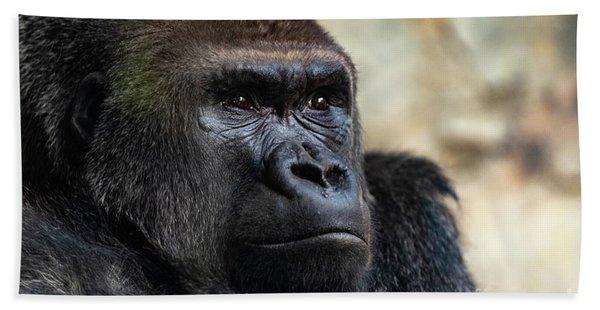Male Western Gorilla Looking Around, Gorilla Gorilla Gorilla Hand Towel