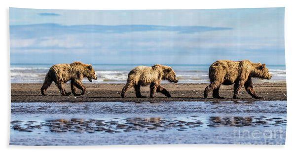 Mama Bear And Her Two Cubs On The Beach. Hand Towel