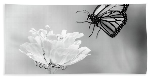 Monarch In Infrared 6 Hand Towel