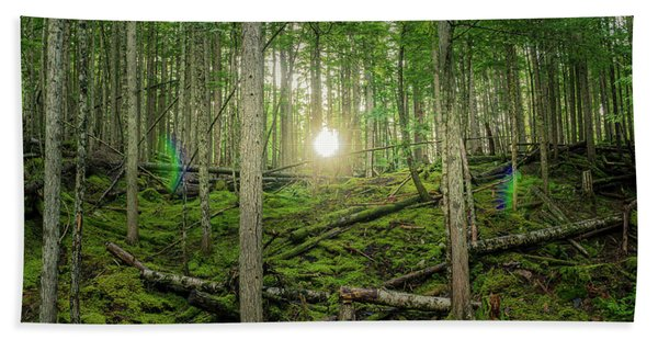 Monashee Forest Sunset With Flare Bath Towel