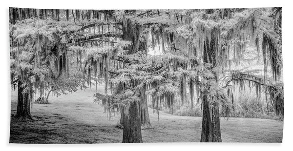 Moss Laden Trees 4132 Bath Towel