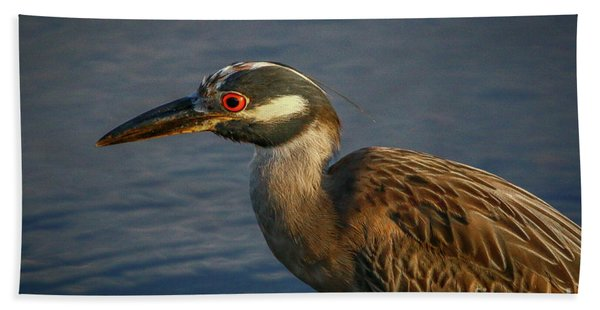 Bath Towel featuring the photograph Night Heron Portrait by Tom Claud