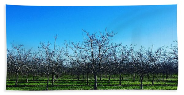 Orchard Trees In Blue Bath Towel