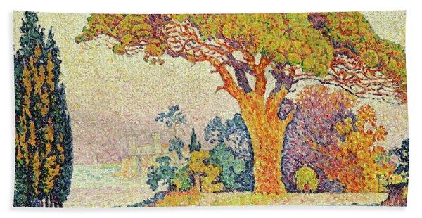 Pine Trees At Bertaud, Saint Tropez Provence Hand Towel