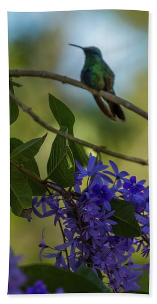 Purple Blossoms And Hummingbird Hand Towel
