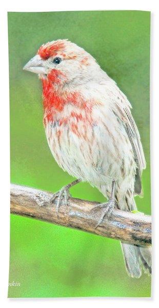 Purple Finch, Animal Portrait Bath Towel