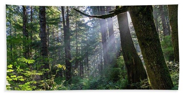 Rain Forest At La Push Hand Towel