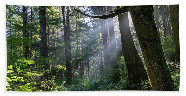 Rain Forest At La Push Bath Towel