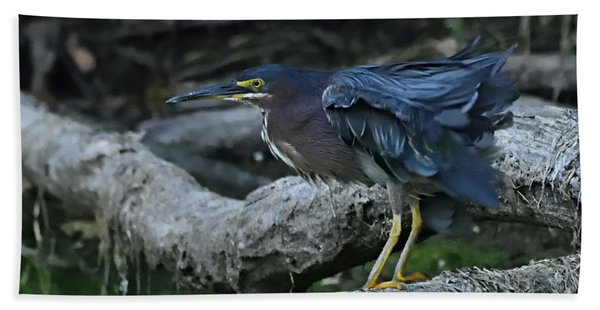 Ruffled Green Heron Hand Towel