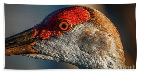 Bath Towel featuring the photograph Sandhill Close Up Portrait by Tom Claud