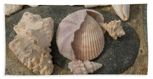 Shell Collection Hand Towel