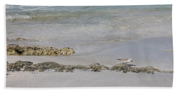Hand Towel featuring the photograph Shorebird by Ruth Kamenev
