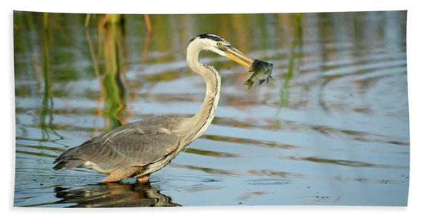 Snack Time For Blue Heron Hand Towel