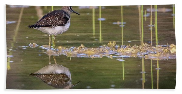 Bath Towel featuring the photograph Spotted Sandpiper Reflection by Tom Claud