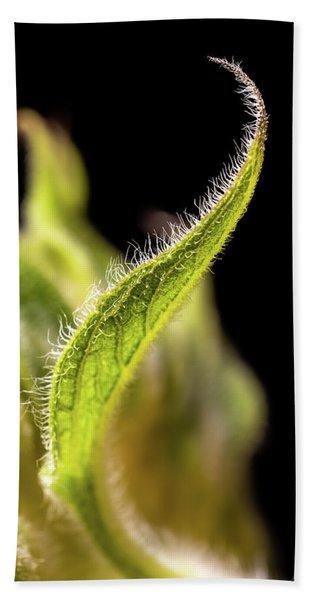 Sunflower Leaf Hand Towel