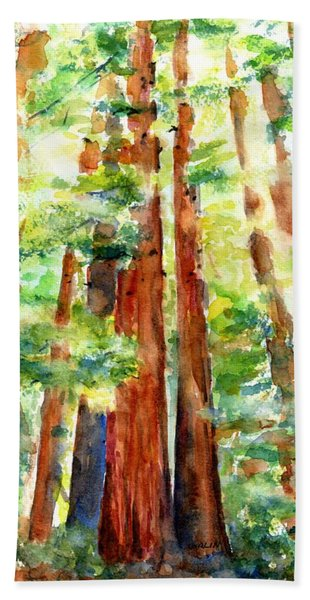 Sunlight Through Redwood Trees Bath Towel