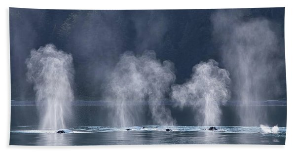 Synchronized Swimming Humpback Whales Alaska Bath Towel