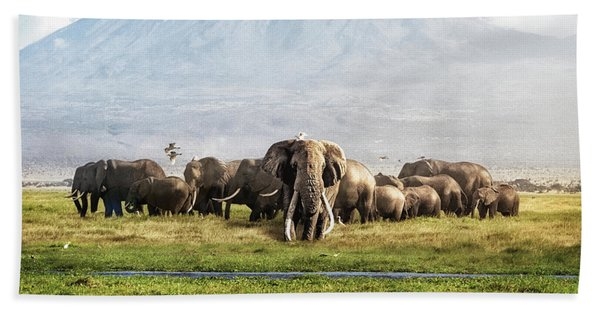 The Patriarch Of Amboseli Hand Towel