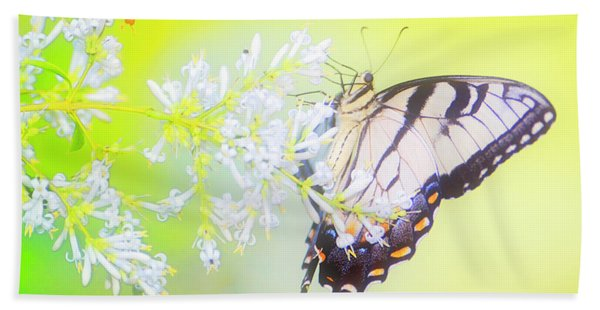 Tiger Swallowtail Butterfly On Privet Flowers Hand Towel