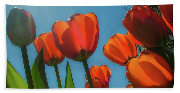 Towering Tulips Bath Towel