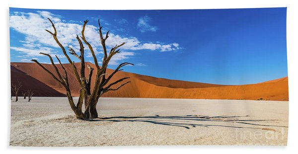 Tree And Shadow In Deadvlei, Namibia Bath Towel