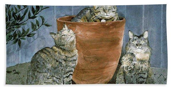 Tres Gatos Hand Towel