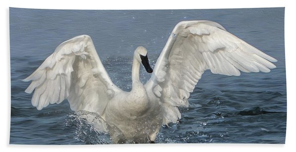 Bath Towel featuring the photograph Trumpeter Swan Splash by Patti Deters