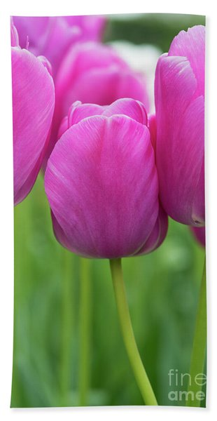 Tulip Purple Pride Flowers Bath Towel