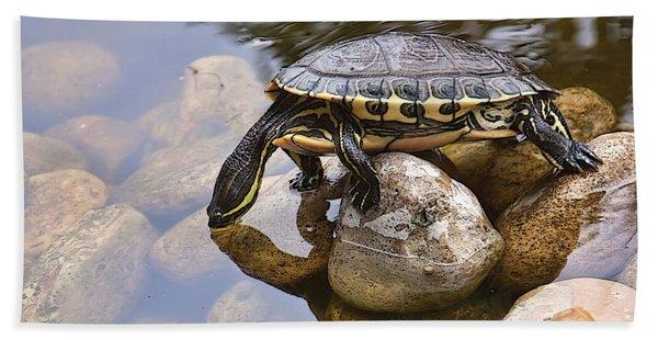 Turtle Drinking Water Hand Towel