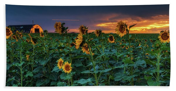 Hand Towel featuring the photograph Whispers Of Summer by John De Bord