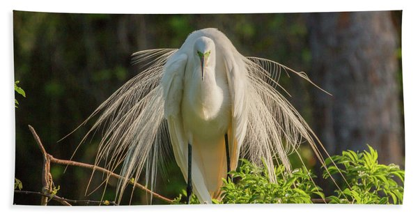 White Egret Hand Towel