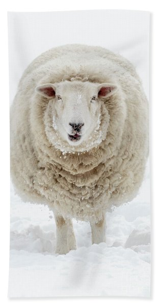 Wooly Wooly Bath Towel