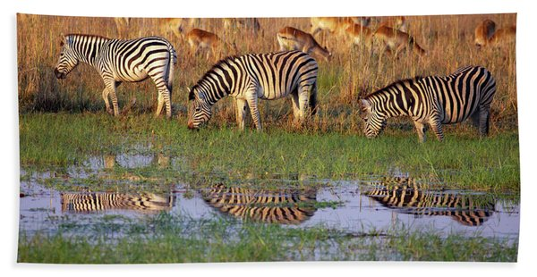 Zebras In Botswana Bath Towel