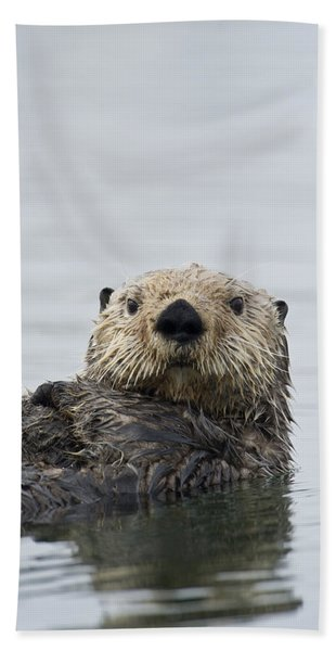 Sea Otter Alaska Beach Towel