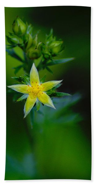 Starflower Beach Towel