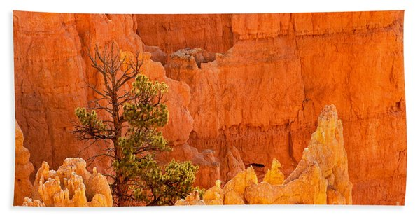 Sunset Point Bryce Canyon National Park Beach Towel