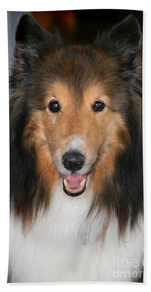A Dog Named Beau Beach Towel