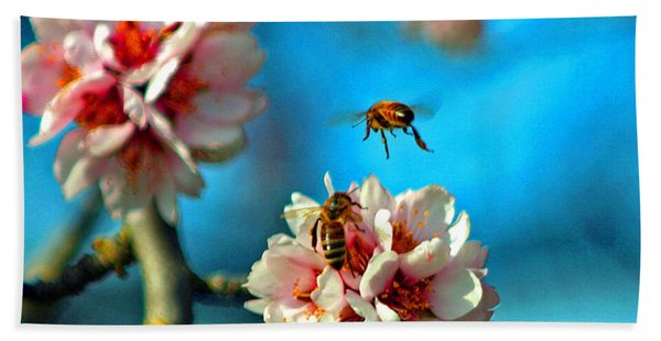 An Almond Pollen Day Beach Towel