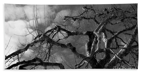 Apple Tree Bw Beach Towel