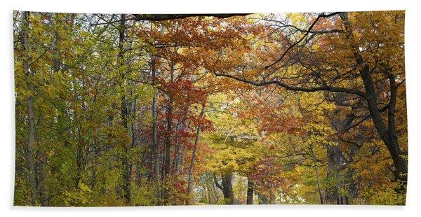 Autumn Nature Trail Beach Towel