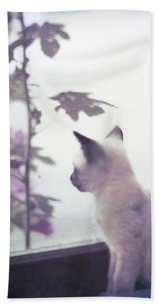 Baby Siamese Kitten Beach Towel
