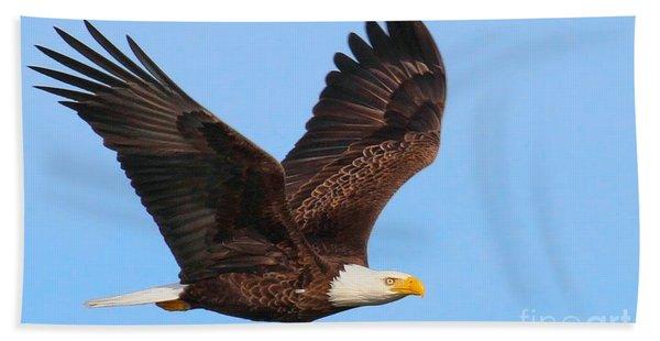 Bald Eagle In Flight Beach Towel