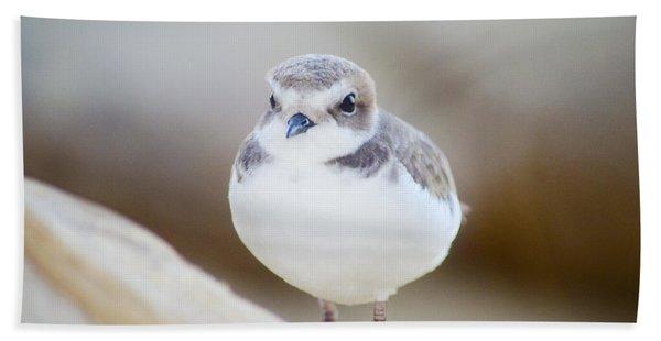 Beautiful Bird Beach Towel