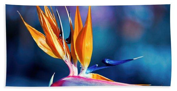 Beach Towel featuring the photograph Bird Of Paradise by Gunter Nezhoda
