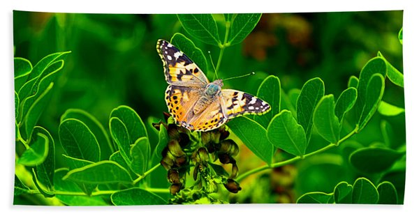 Beach Towel featuring the photograph Butterfly In Paradise by Gunter Nezhoda